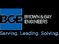 Brown and gay engineering