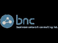 systems engineer business network consulting - Network Consulting Engineer