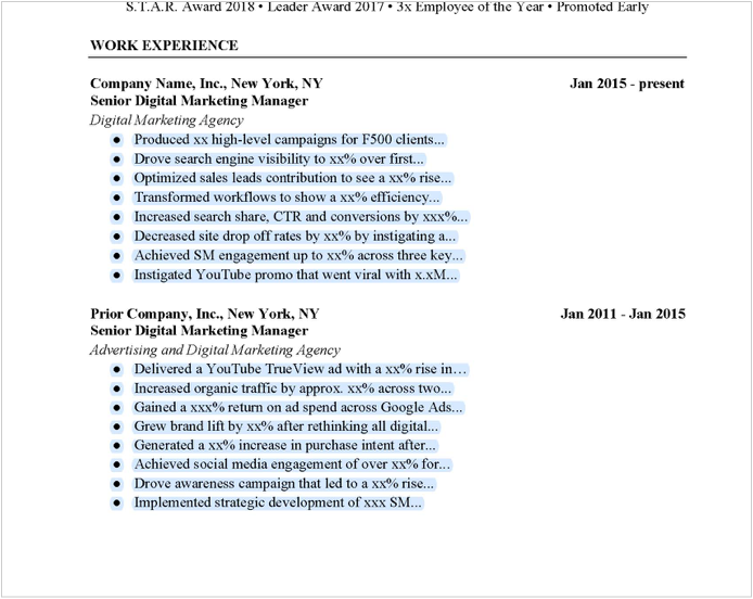 Digital Marketing Manager Resume Example Free Download