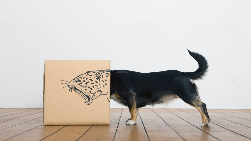 Why you shouldn't think outside the box
