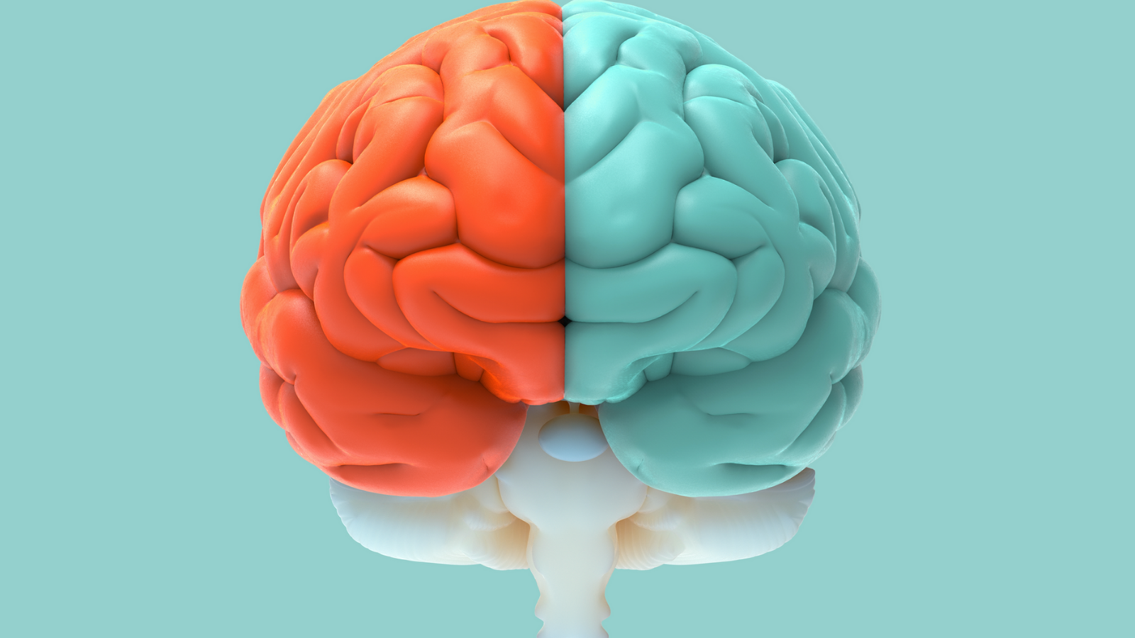Everything you need to know about becoming a neurologist