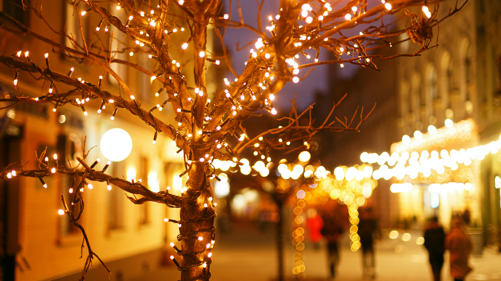 7 things successful people do over the holiday season