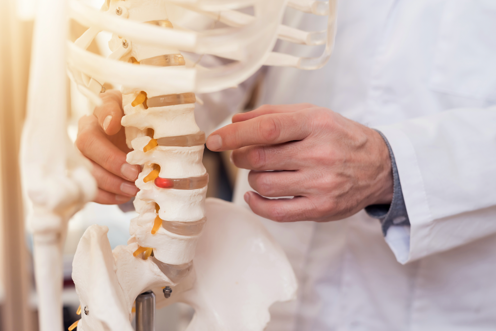 Everything you need to know about becoming a chiropractor
