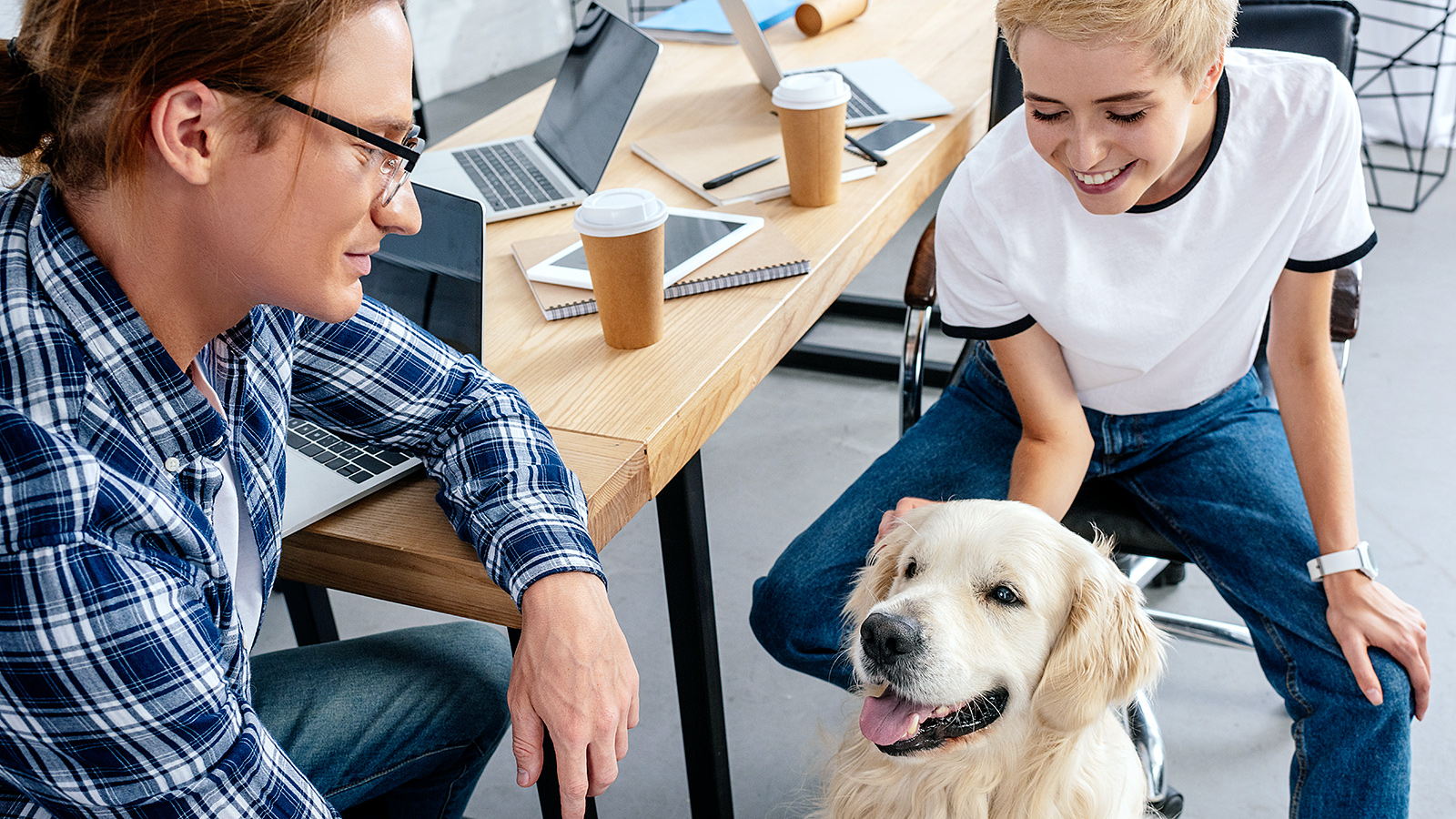 The argument for dogs at work