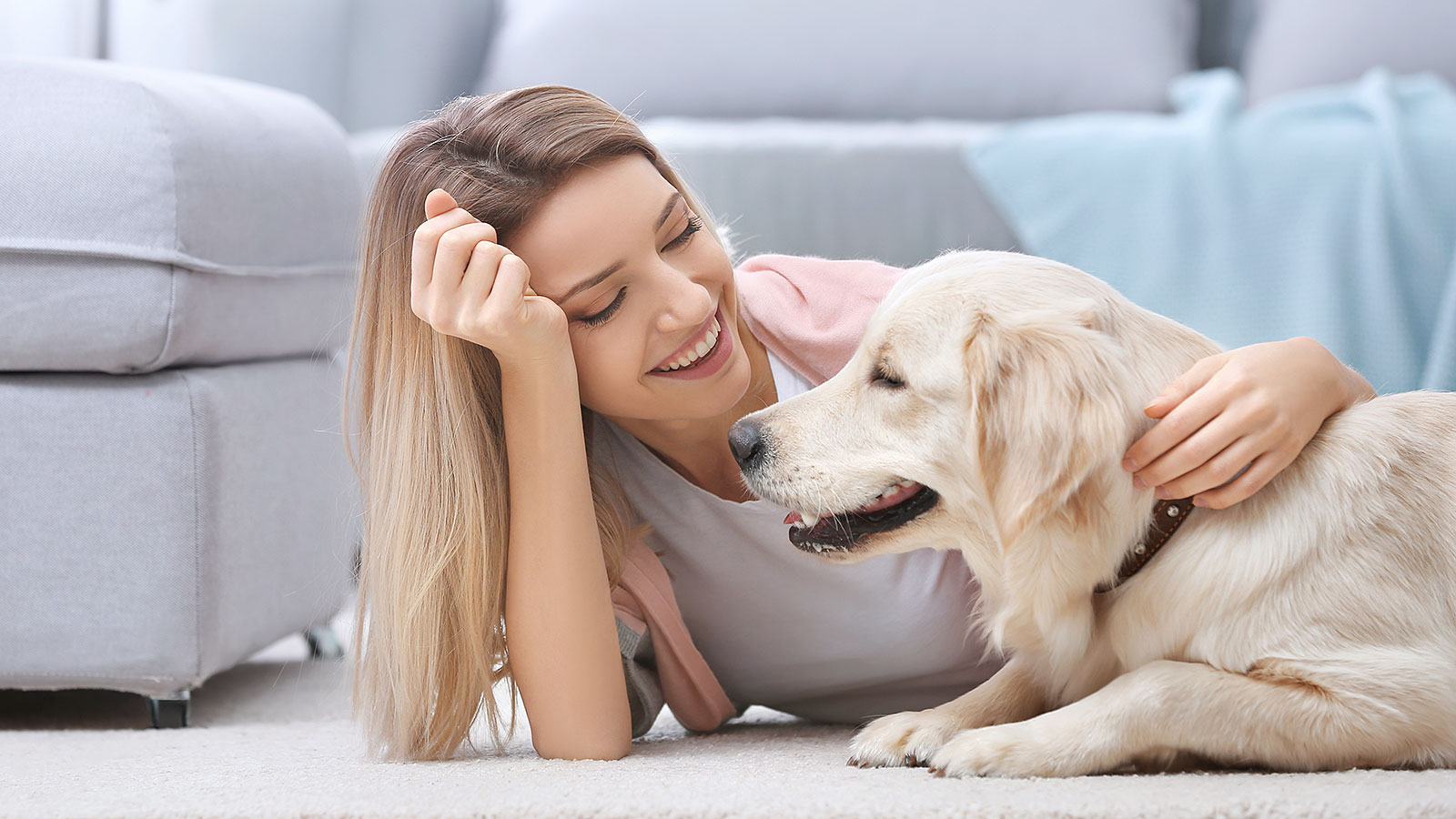 Petting a dog or a cat can be a massive stress reliever: study