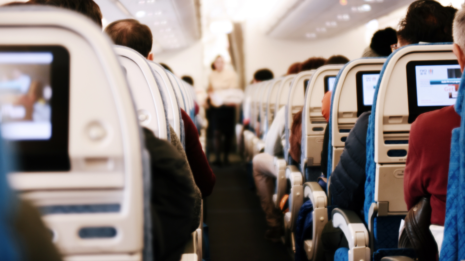 Here's how you can turn your small talk on a plane into a new career