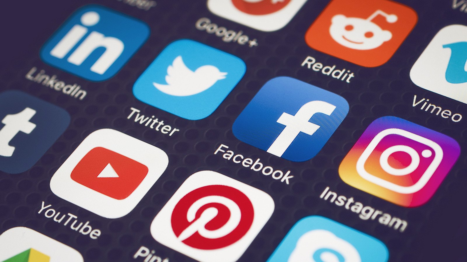 Social media gurus on trends you can expect by the end of the year