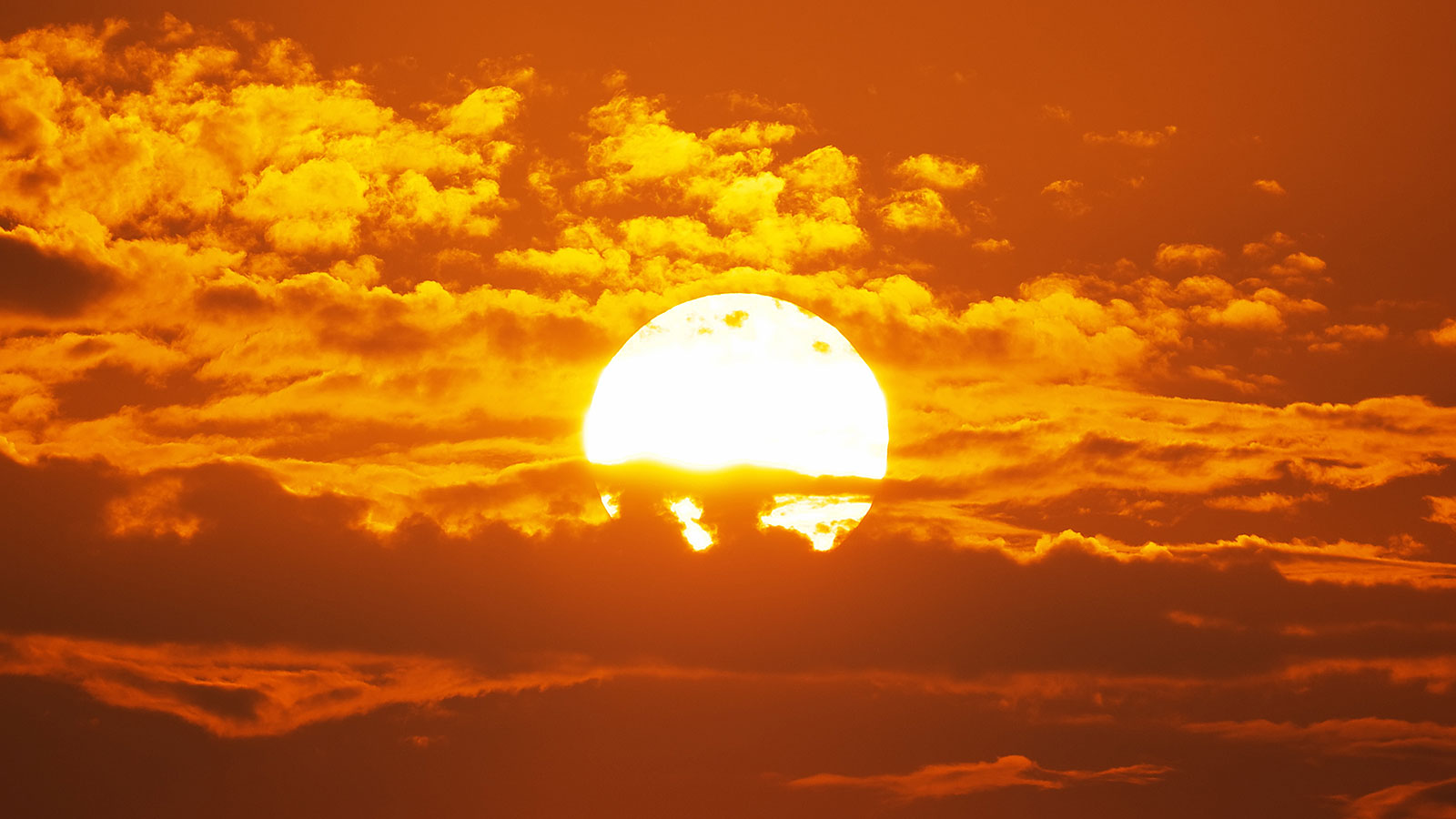 The burning question: What this summer's heatwave says about climate change
