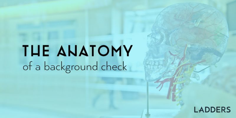 The Anatomy of a Background Check | Ladders | Business News & Career ...