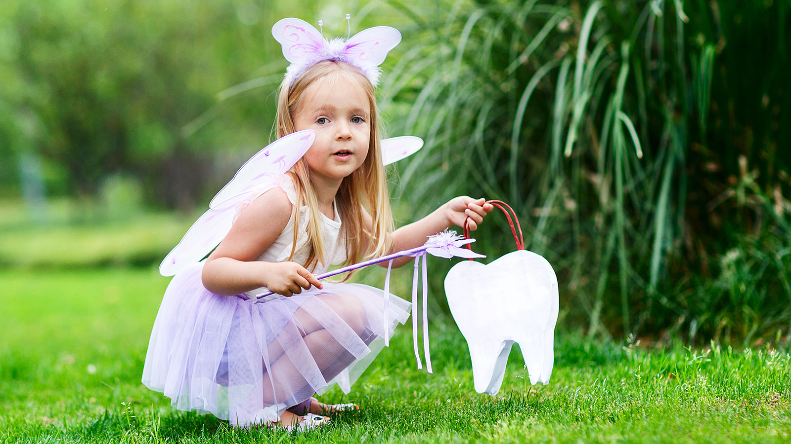 This is how much the Tooth Fairy pays per state