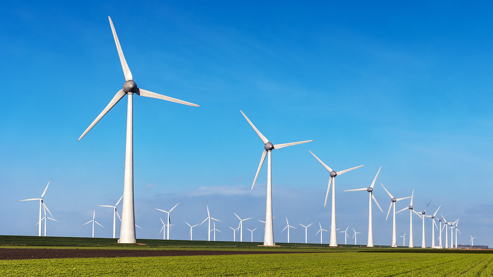 Looking for a long-term career? Here's why clean energy's a good place to start